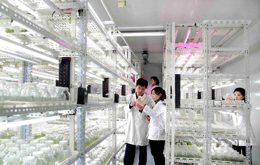 새로운 화초품종을 육종하기 위해