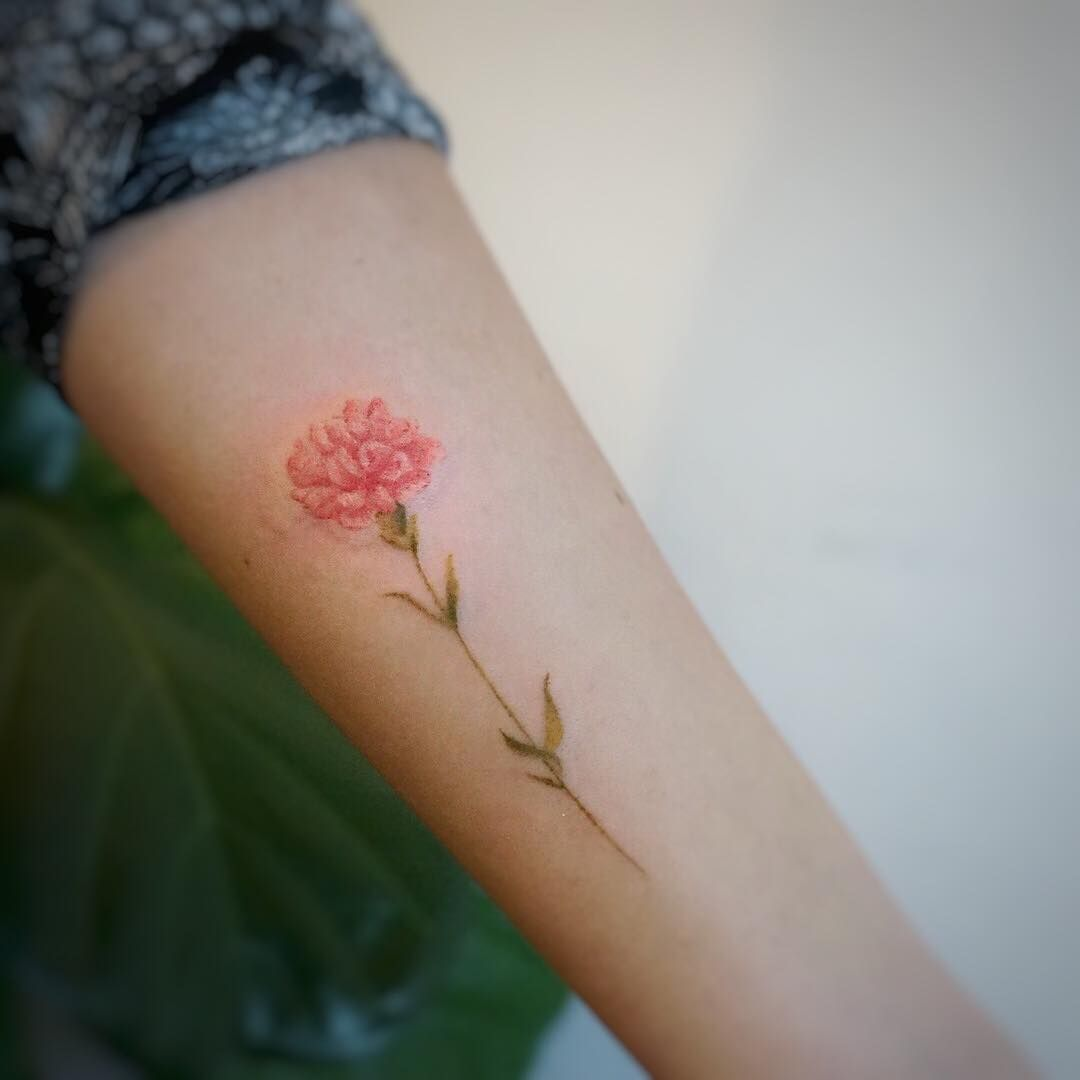 Carnation Carnation Tattoo Birth Flower Tattoos Carnation