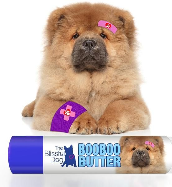 Chow Boo Boo Butter Chow Chow The Balm Dogs
