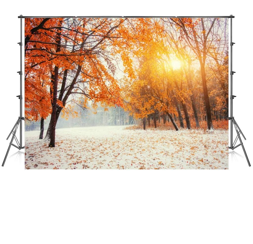 10x10 Ft Sunset Red Maple Leaves Snow Photography Backdrop Background Backdrops Backgrounds Snow Photography Photography Backdrop