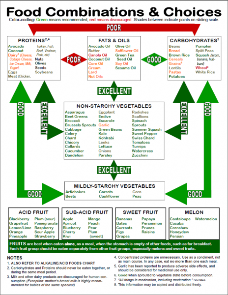 graphic regarding Food Combining Chart Printable titled Foodstuff Combining Chart No cost obtain - ABHealthShop Exercise
