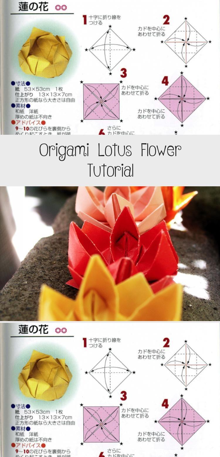 Photo of Origami Lotus Flower Tutorial über Papier Kawaii #origamiInstructions #origamiVide …