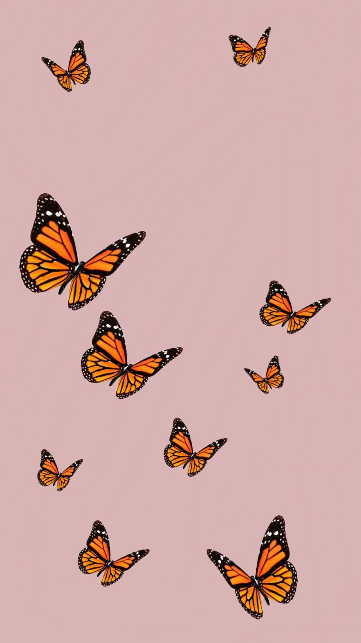 Phone Wall Paper Pastel Phonewallpaper Iphonewallpaper Butterfly Wallpaper Iphone Iphone Wallpaper Vsco Aesthetic Iphone Wallpaper