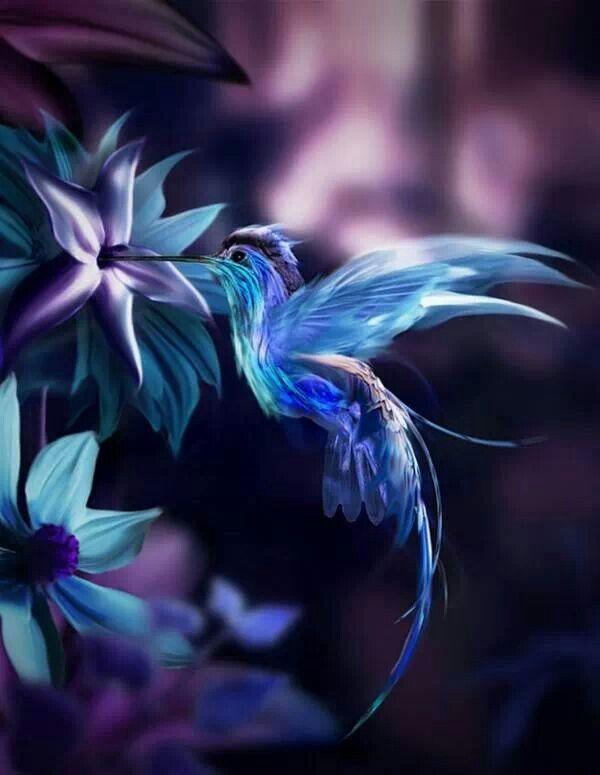 Pin By Christine Helin On Beaute Good Night Friends Bird Photography Good Night