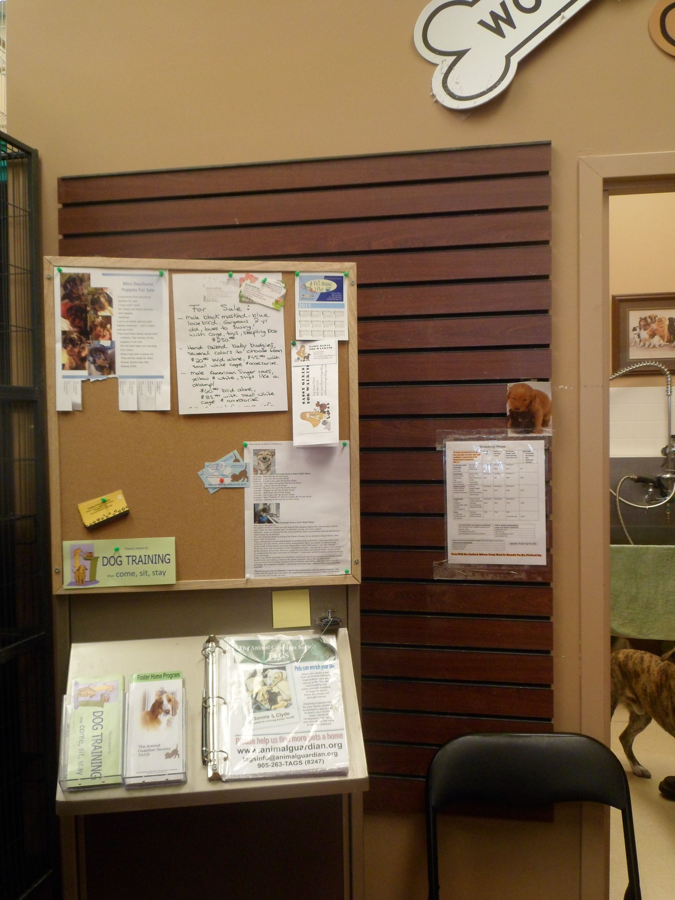 Tags Bulletin Board At The Entrance Of Our Microchip Clinic At Pet Valu Clinic Bulletin Boards Dog Training