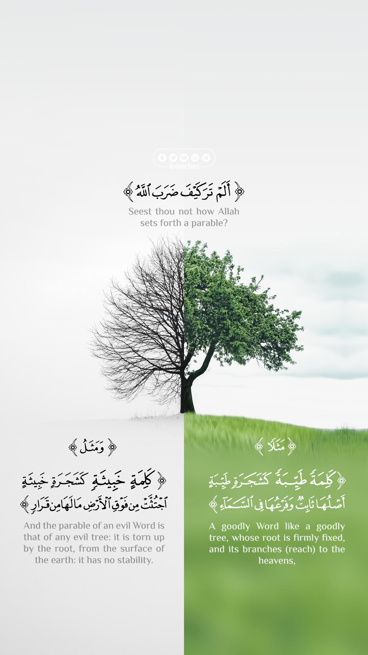 مثل كلمة طيبة Beautiful Quran Quotes Quran Quotes Quran Quotes Love