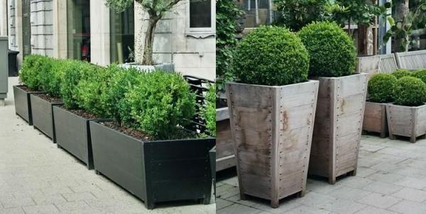 Macetas jardineria pinterest jardines muebles de for Arbustos para macetas exterior