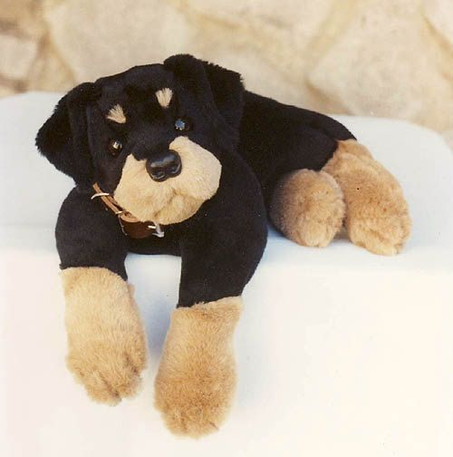Rottweiler Sewing Pattern 20 Long Puppy Dog By Springtimedesigns