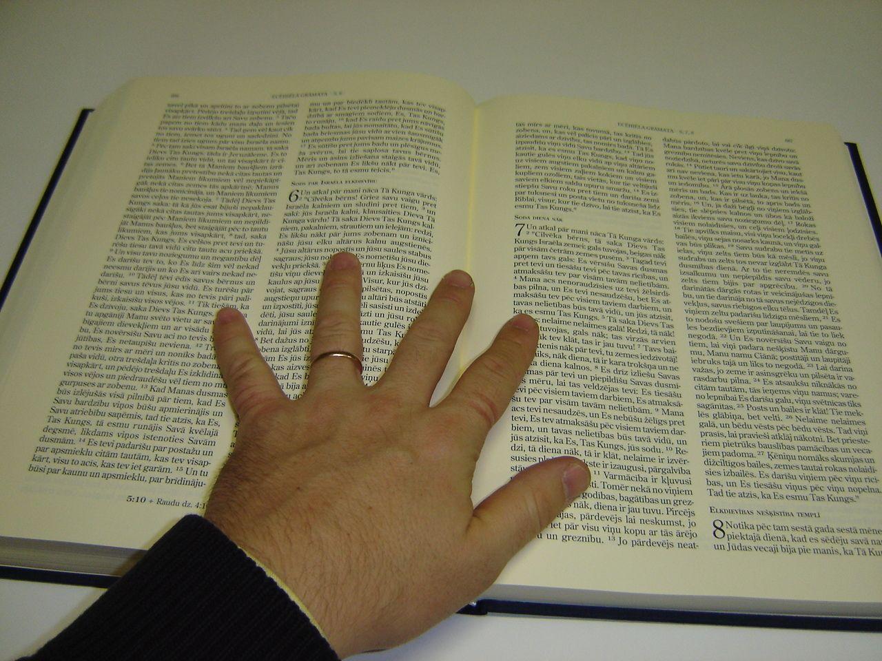 Bibel übersetzungen