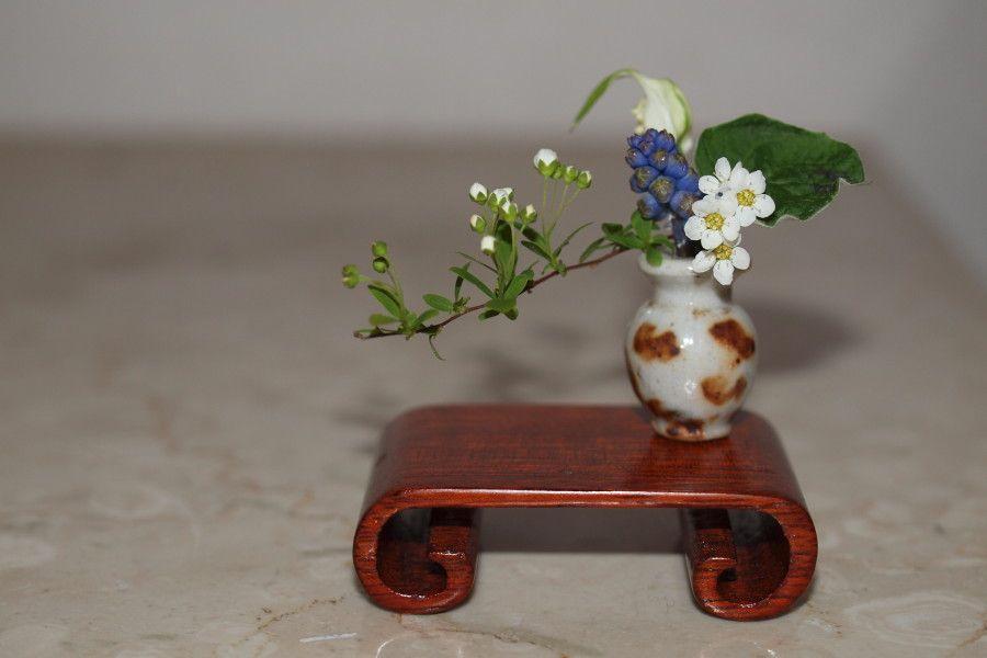 images of miniature ikebana - Google Search