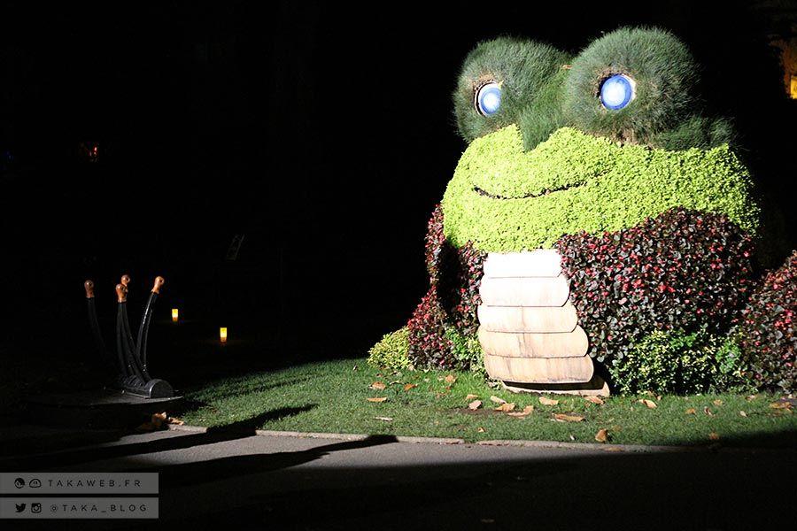nantes-jardin-des-plantes-nuit- | PARTIR A NANTES La nuit | Pinterest
