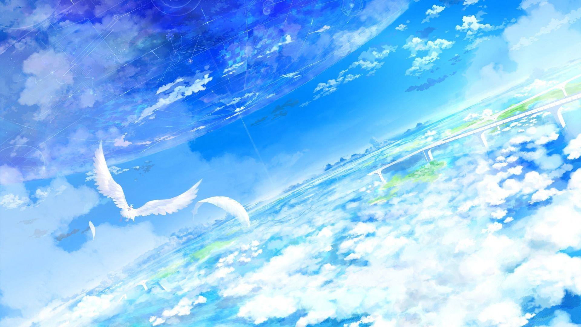 небо, облака, высота, птицы,
