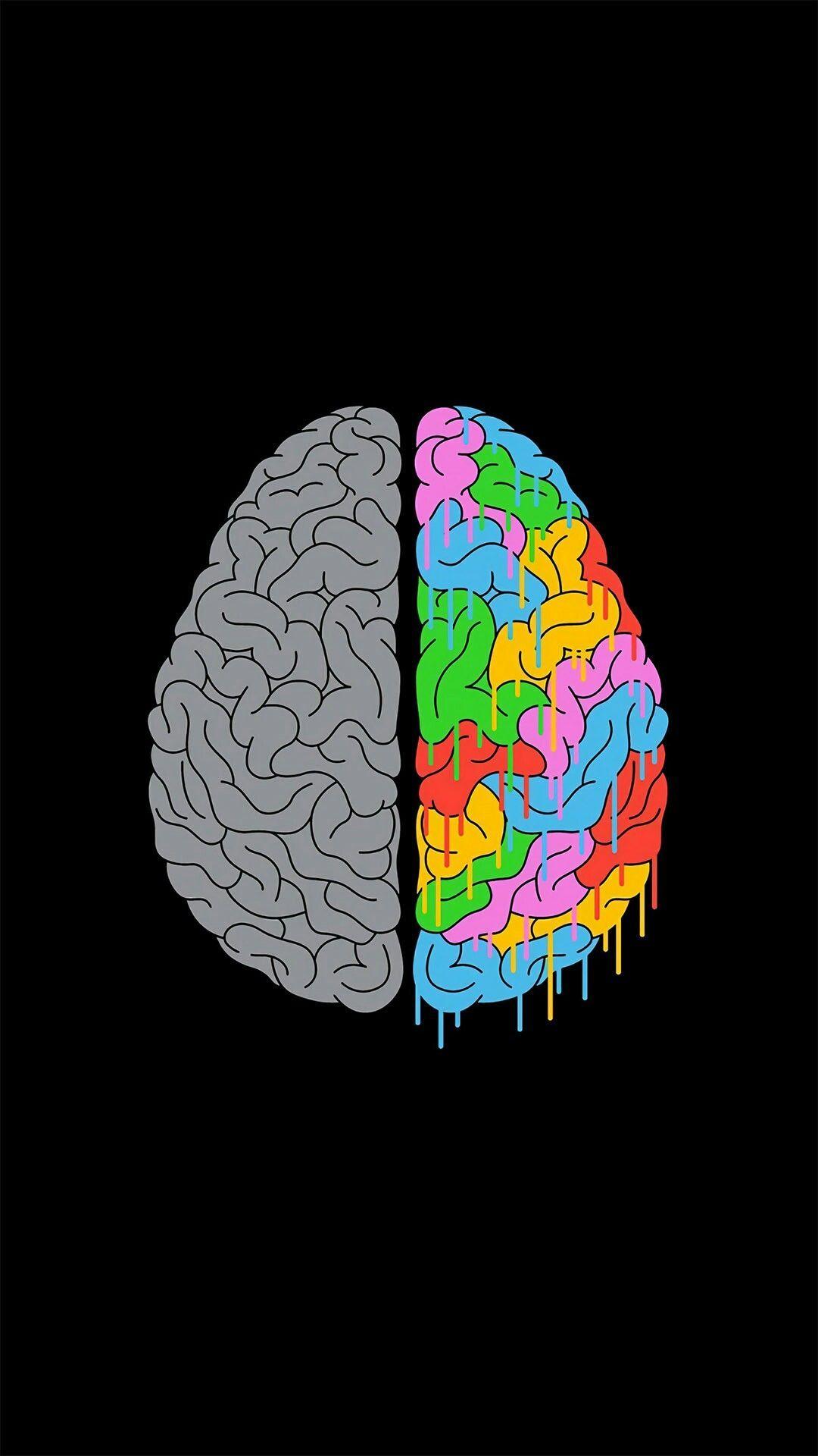 Brains Colorful Art Artwork Digitalart In 2019 Art