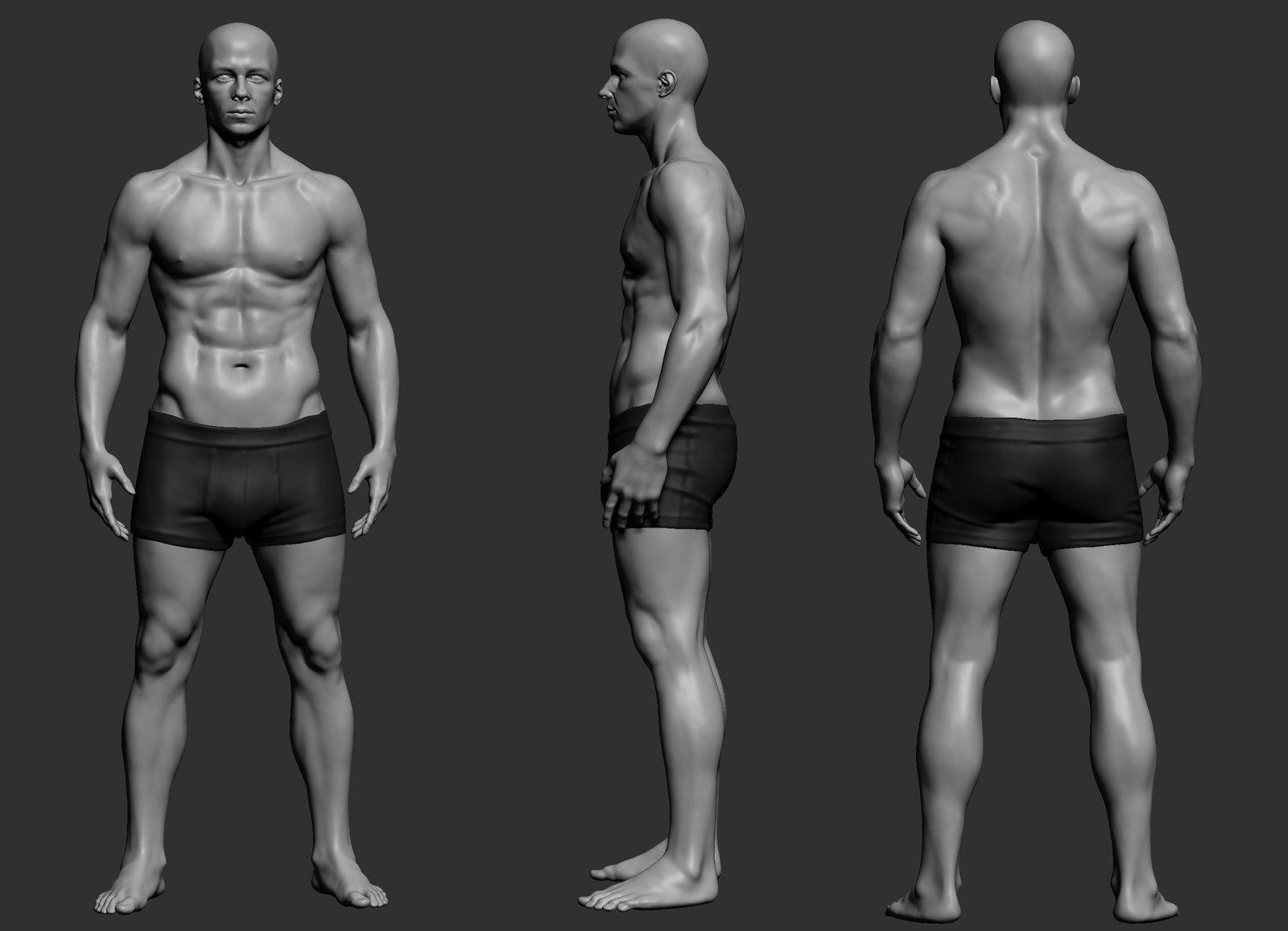 Male Anatomy Study, Mohit Chauhan on ArtStation at https://www ...