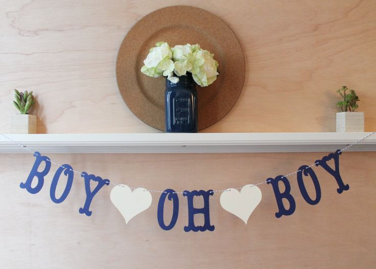 Boy Oh Boy Banner - Custom Colors - Baby Shower Decoration or Pregnancy Gender Announcement Photo Prop