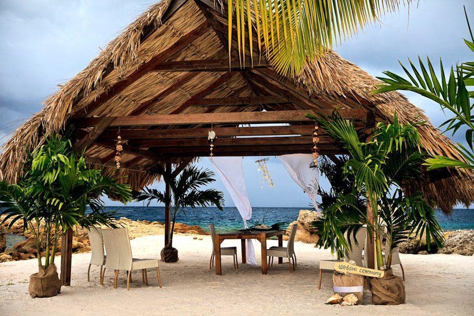 Palapa | Backyard beach, Backyard inspo, Backyard on Palapa Bar Backyard id=35324