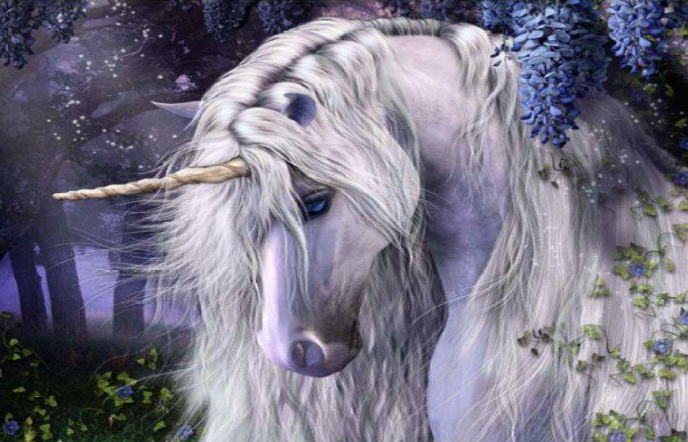 Fantasy Art - Unicorns Galleries