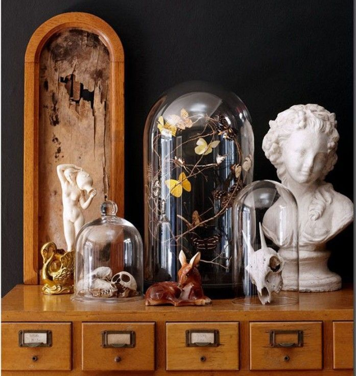 cabinet of curiosities halloween decor ideas to spook your creativity pinterest cabinet. Black Bedroom Furniture Sets. Home Design Ideas