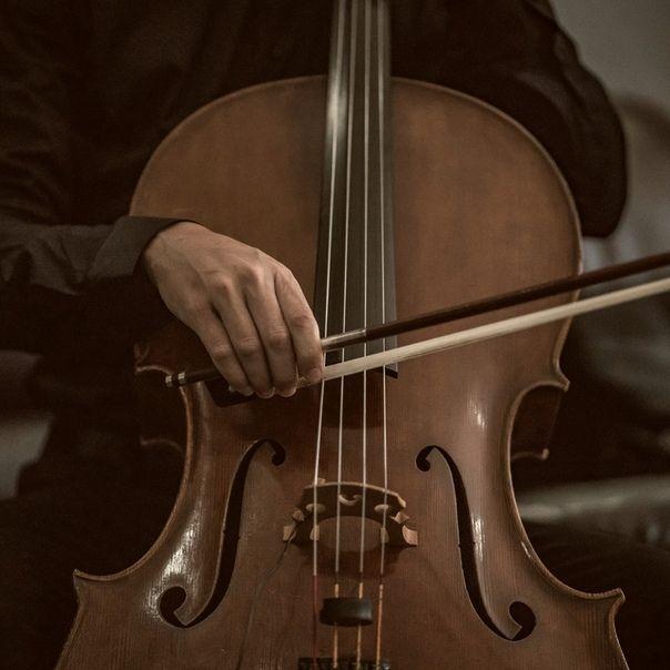 210 Ideas De Imágenes De Cello En 2021 Violonchelo Violines Musica