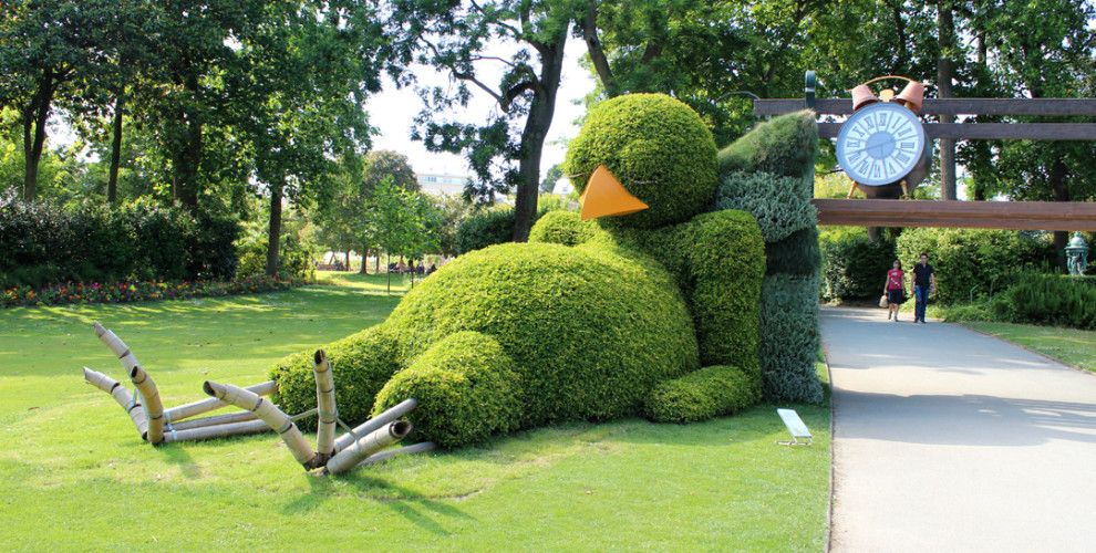 Sleepy chick: probably the cutest hedge we\'ve ever laid our eyes on ...