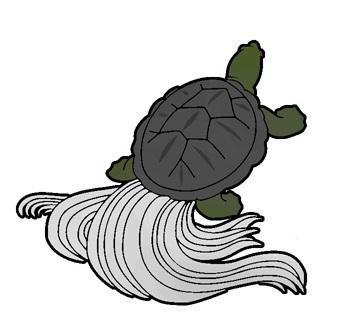 亀 かめ の柄の着物は正月 通年に着よう わかる着物の柄 亀 鶴 亀 和 ロゴ
