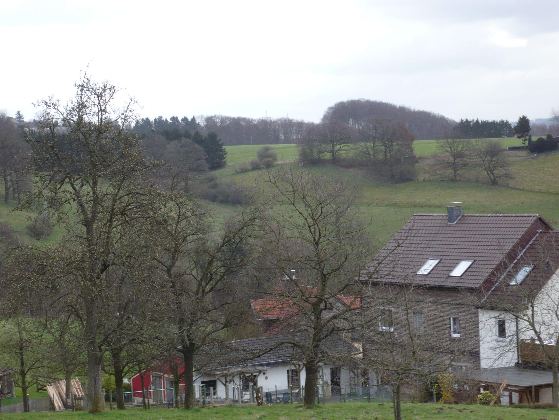 Im  Sauerland  Natur