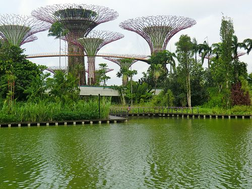Unusual Architecture Amid Natural Beauty Natural Beauty Gardens By The Bay Nature