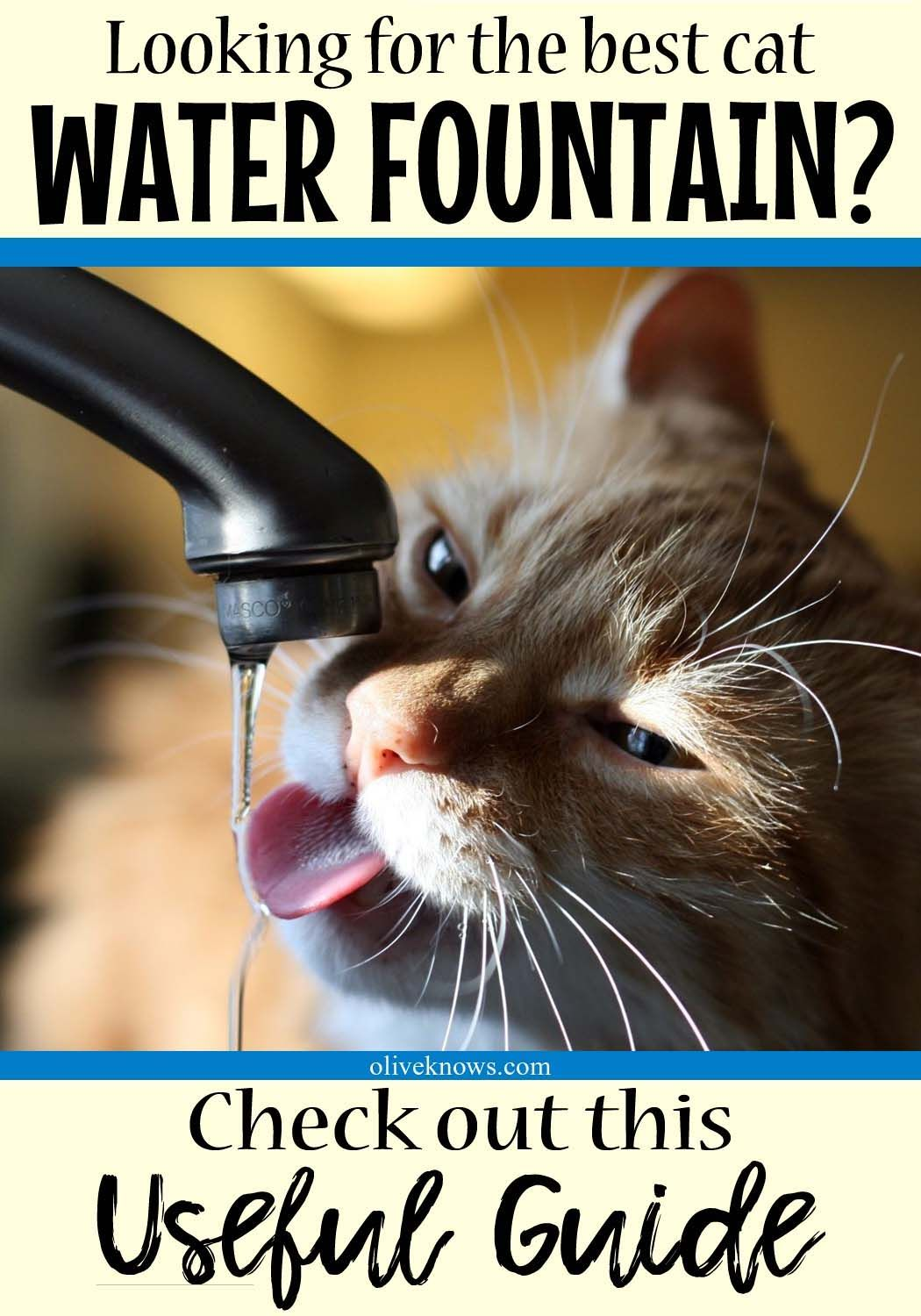 How to choose the best cat water fountain cat water