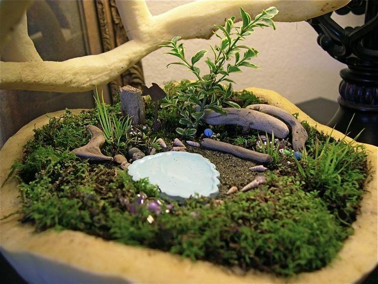 Jardin en pot pour le balcon- créez un paradis miniature ...