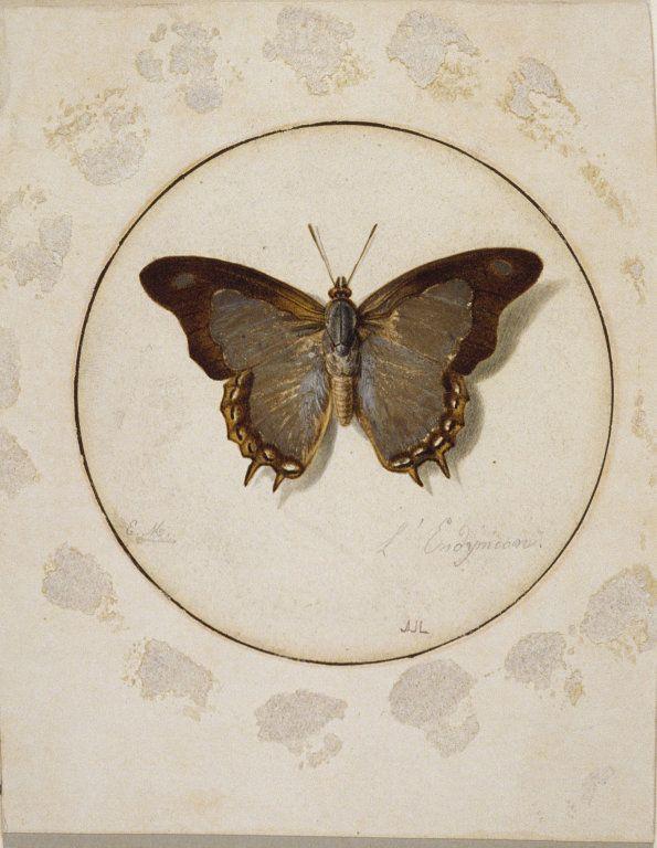 'L'Endymien' by Jean Louis Ernest Meissonier (French 1815-1891)(Art Institute of Chicago)