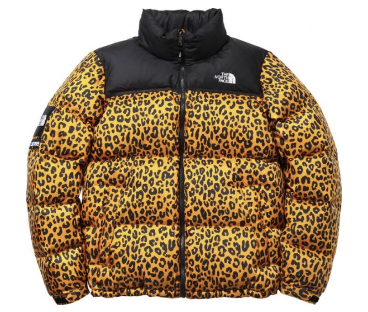 7a76f4603 Supreme North Face Nuptse Leopard Coat | Products | North face ...