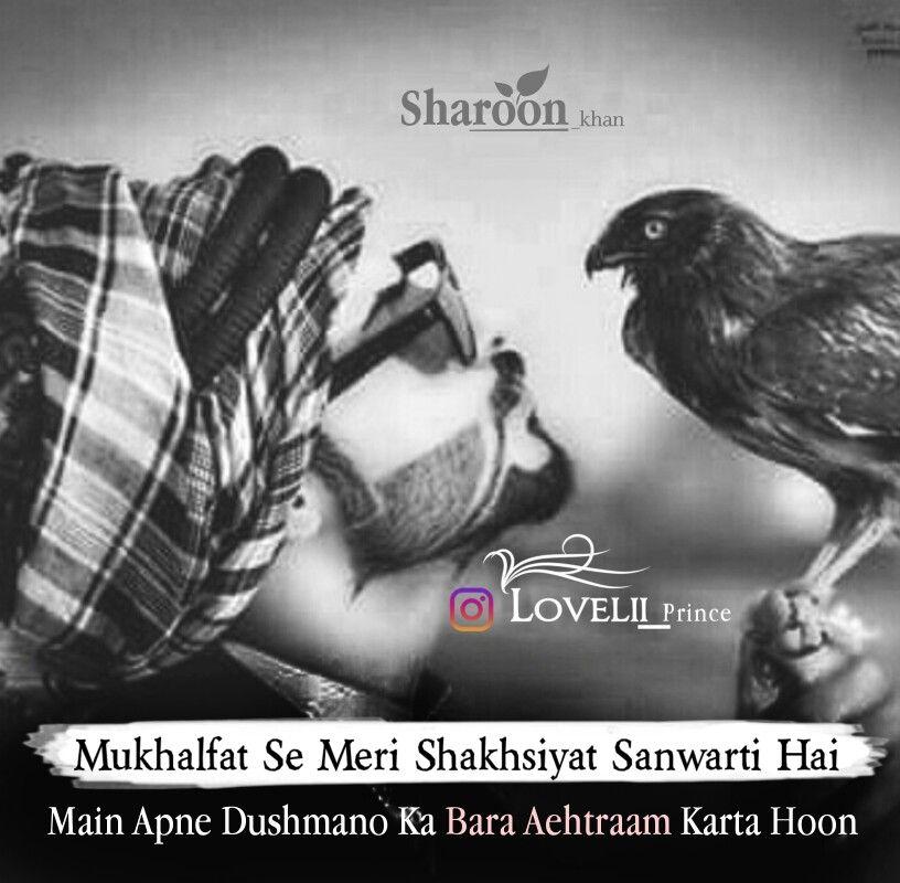 Pin On Sharoon World