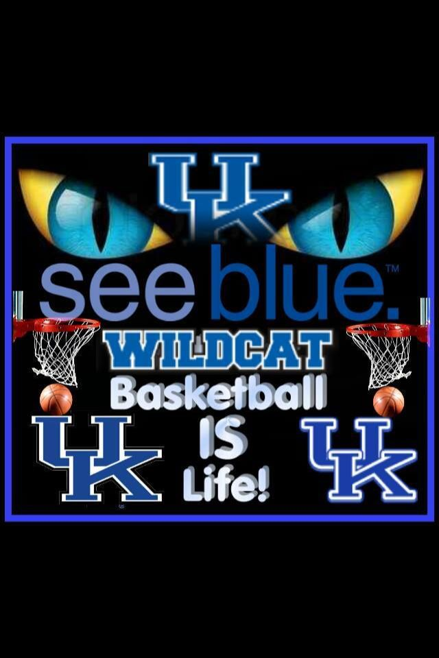 Wildcats (With images)   Uk wildcats basketball, Big blue ...