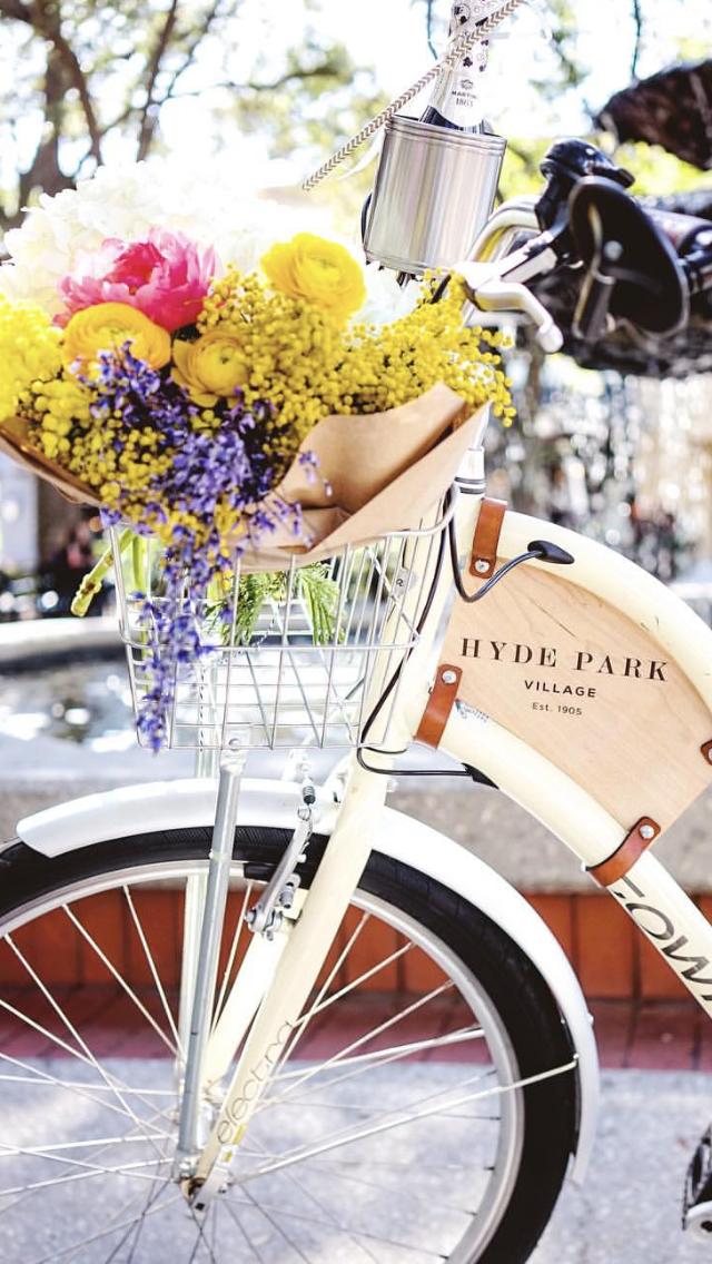 Ana Rosa Pretty Bicycle Hyde Park Tampa Pretty Bike