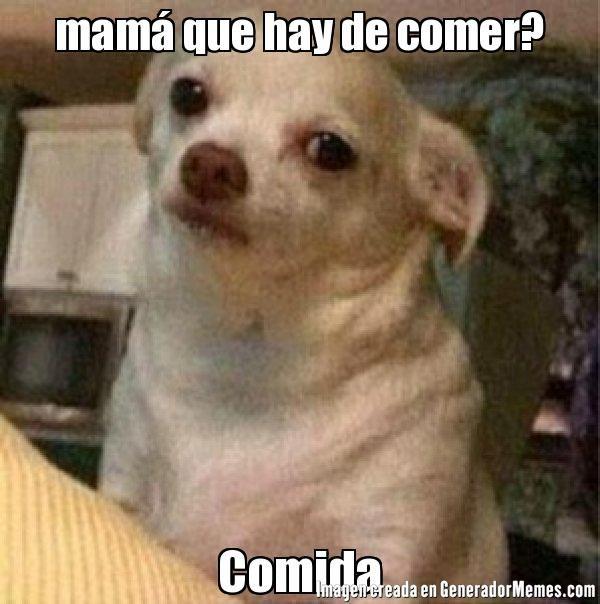f96aac2aba235 mamá que hay de comer  Comida - Meme perro chihuahua enojado ...