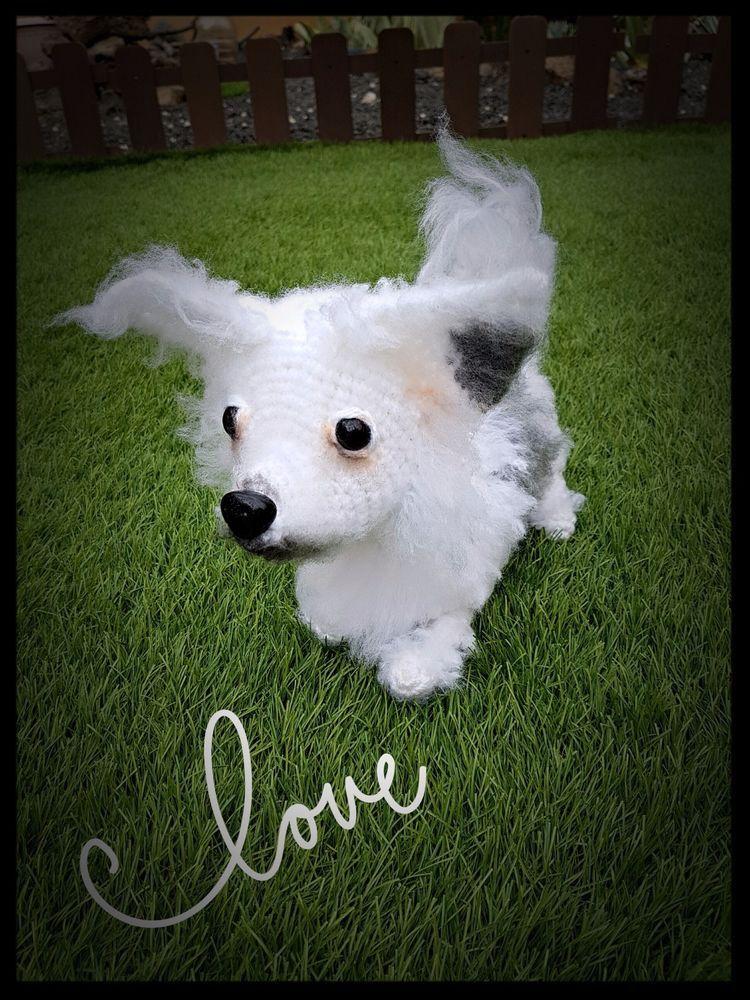 Langhaar Chihuahua, Hund, realistisch gehäkelt, Amigurumi ...