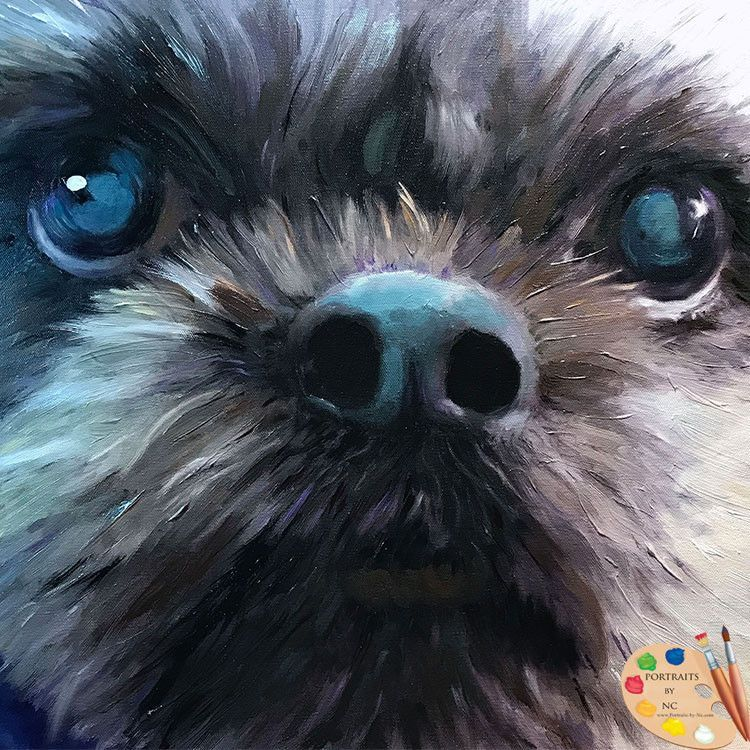 Large Shih Tzu Dog Portrait 564 Dog Portraits Shih Tzu Dog Shih Tzu