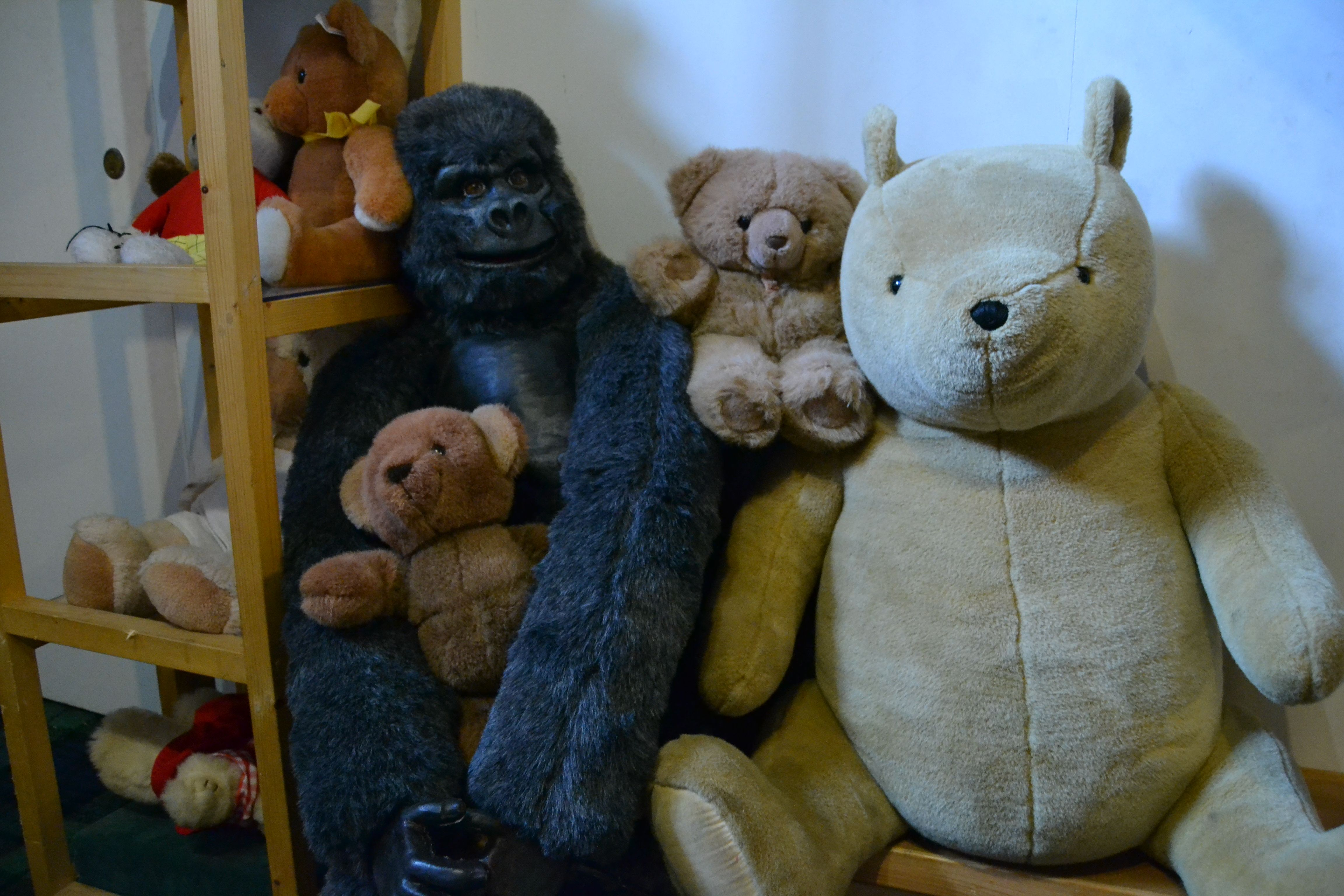 Gorilla Going Incognito In The Teddy Bear Museum