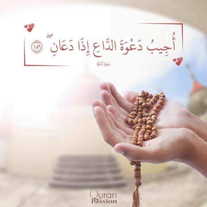 يارب إن كان لايرد القدر إلا الدعاء فاكتب لقدرى ما أحلم به وما أتمن اه فإن أحلامي صغيرة أمام أستجابتك وعطائك الذي لا يتوقف Islam Quran Islam Quran