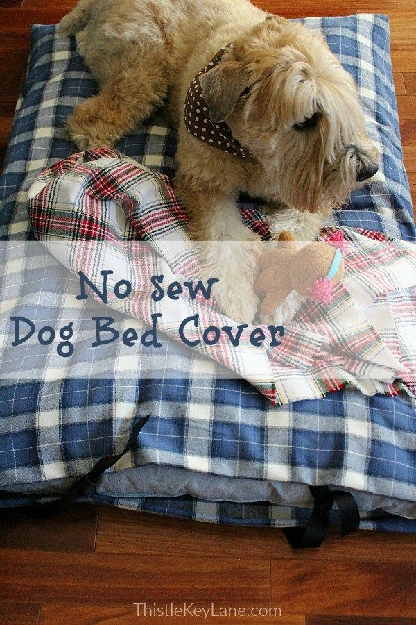 No Sew Dog Bed Cover Dog pillow bed, Diy dog bed, Dog bed