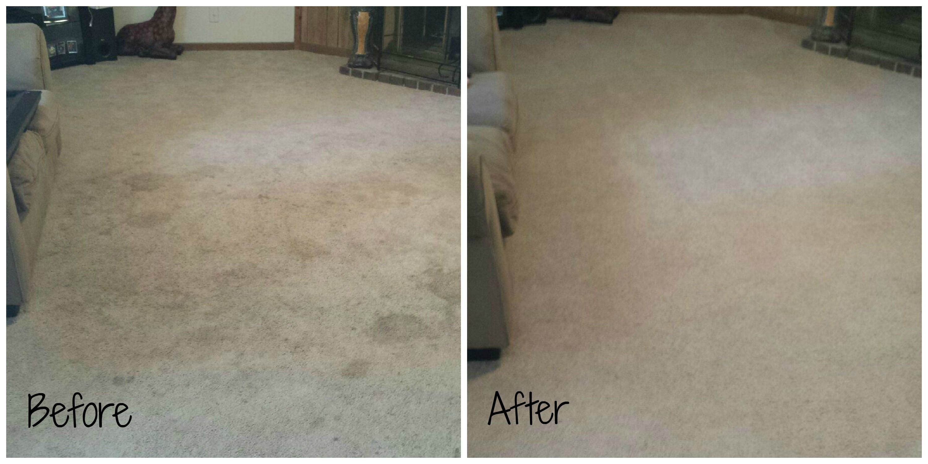Carpet Cleaning A Deeper Look How To Clean Carpet Deep Carpet Cleaning Cleaning