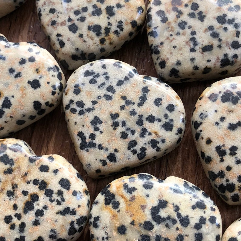 a Dalmation Jasper Heart
