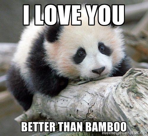 Animal i love you memes - photo#34