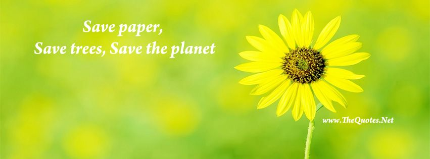 Facebook Cover Image Beautiful Flower Save Paper Save Trees