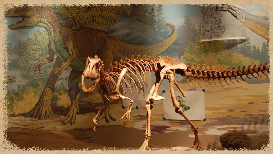 Utah Field House Of Natural History Aka Dinosaur National