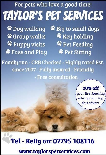 Taylor S Pet Services We Are A Family Run Business Offering A Professional Pet Service We Strive To De Pet Sitting Business Pet Sitting Dog Walking Business