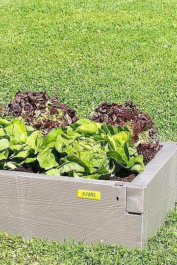 Juwel Hochbeet Timber Bxtxh 130x60x20 Cm Kaufen Gartenbau Pflanzideen Hochbeet
