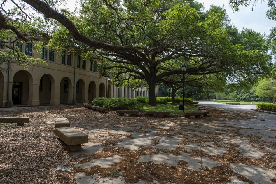 How much cares act money will louisiana college students