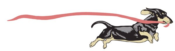 Dachshund running with pink ribbon card design.  Pink ribbon symbol of breast cancer.