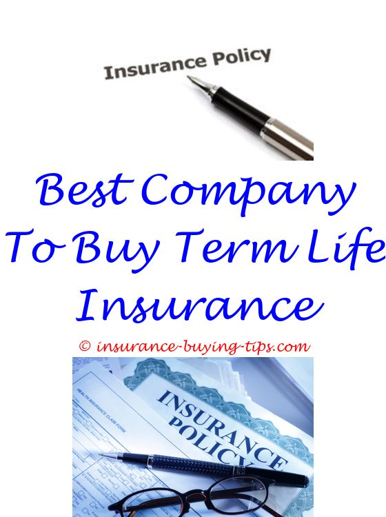 Renters Insurance Quotes Prepossessing Instant Online Auto Insurance Quote  Online Auto Insurance